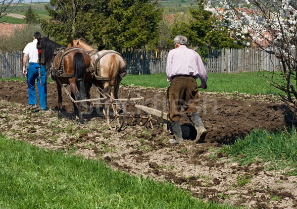 Two men plowing Stock photo © emese73