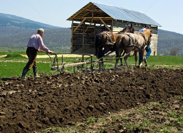 Two men plowing Stock photo © emese73