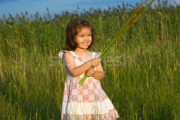Girl holding reeds Stock photo © emese73