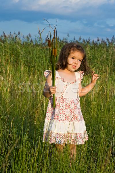 Girl holding reeds Stock photo © emese73