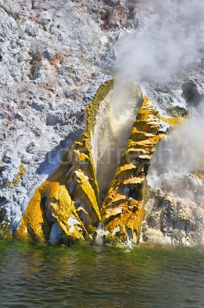 озеро гейзер берега Новая Зеландия Сток-фото © emiddelkoop