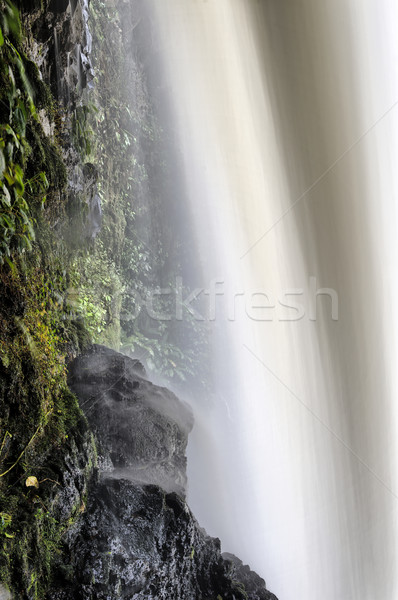 Magia Blanca Falls Stock photo © emiddelkoop