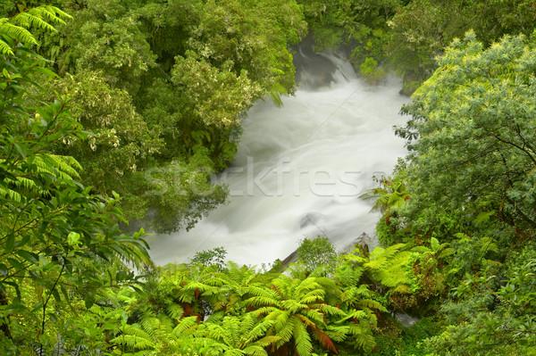 Okere Falls Stock photo © emiddelkoop