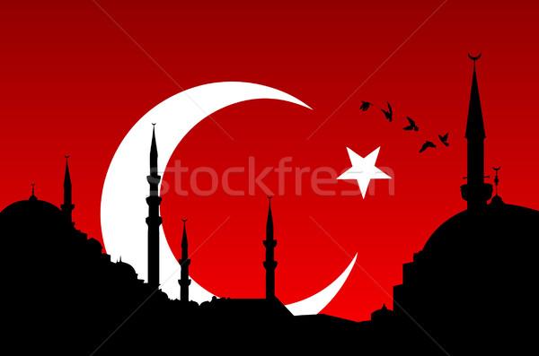Isztambul városkép izolált török zászló tapéta Stock fotó © emirsimsek