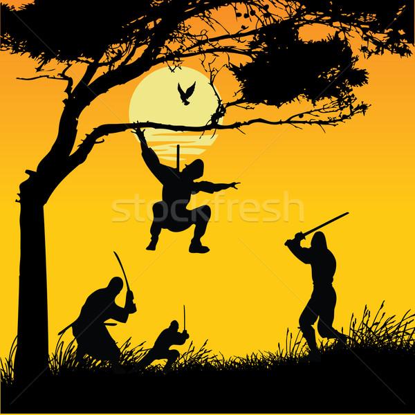 Foto stock: Sangue · preto · silhueta · espada · lutar · escove