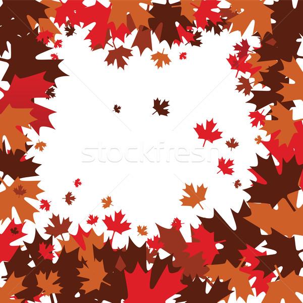 Juhar vektor fa absztrakt levelek ősz Stock fotó © emirsimsek