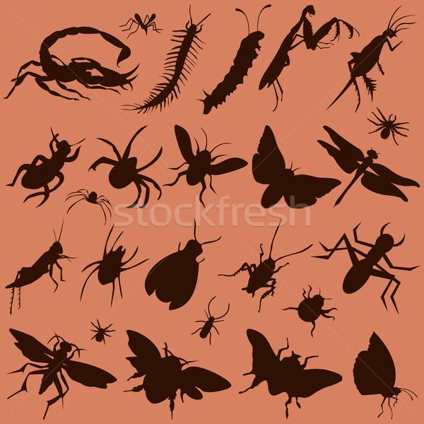 Haşarat vektör ayarlamak siluet örümcek Stok fotoğraf © emirsimsek