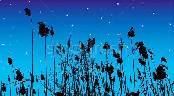 Vektor sziluett levél háttér szépség tó Stock fotó © emirsimsek