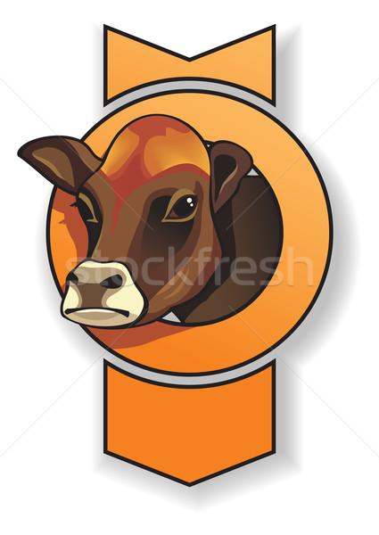 Cow Stock photo © ensiferrum