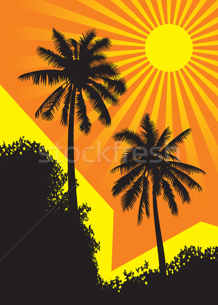 Sunlit palm trees  Stock photo © ensiferrum