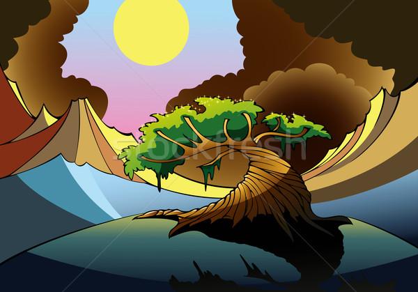 魔法 ツリー 谷 空 木材 太陽 ストックフォト © ensiferrum