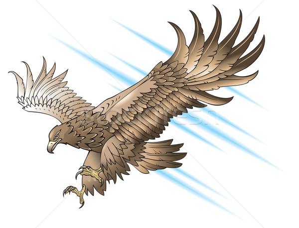 Attacking eagle Stock photo © ensiferrum