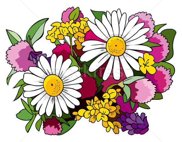 Bouquet fiori di campo bella primavera trifoglio regalo Foto d'archivio © ensiferrum