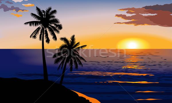 Tramonto mare tropicali palme rosso nubi Foto d'archivio © ensiferrum