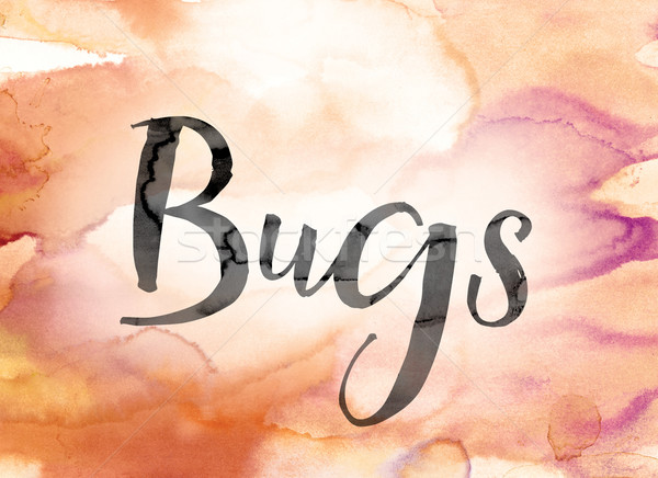 Bugs Colorful Watercolor and Ink Word Art Stock photo © enterlinedesign