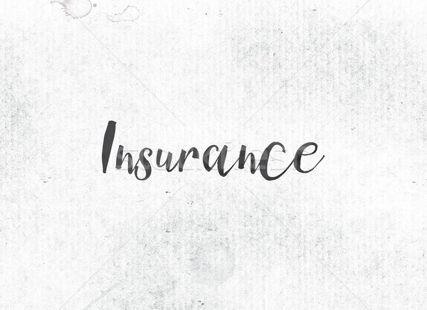 Insurance Concept Painted Ink Word and Theme Stock photo © enterlinedesign