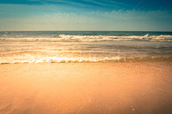 Waves Crashing on the Beach Stock photo © enterlinedesign