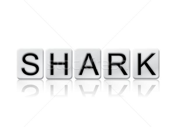 Köpekbalığı yalıtılmış kiremitli harfler kelime yazılı Stok fotoğraf © enterlinedesign