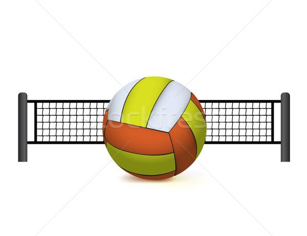 Röplabda net izolált fehér illusztráció valósághű Stock fotó © enterlinedesign