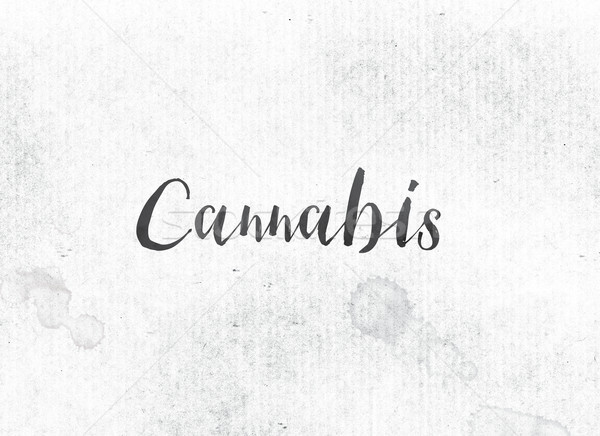 Stock photo: Cannabis Concept Painted Ink Word and Theme