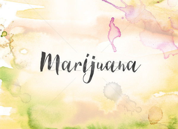 Marijuana Concept Watercolor and Ink Painting Stock photo © enterlinedesign
