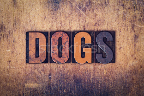 Dogs Concept Wooden Letterpress Type Stock photo © enterlinedesign