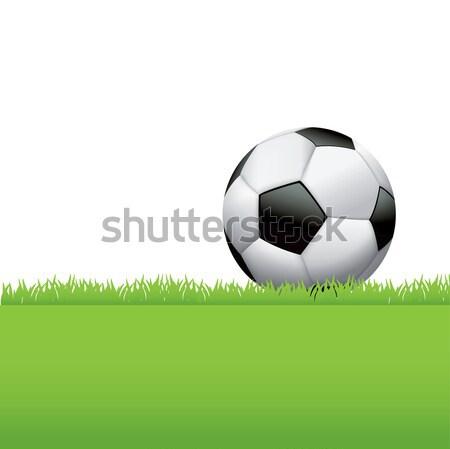 Soccer Ball Sitting in Grass Background Illustration Stock photo © enterlinedesign
