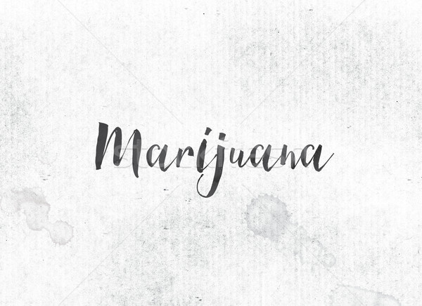 Marijuana Concept Painted Ink Word and Theme Stock photo © enterlinedesign