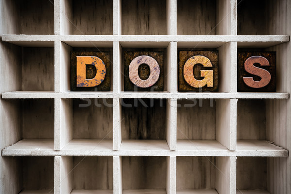 Dogs Concept Wooden Letterpress Type in Draw Stock photo © enterlinedesign