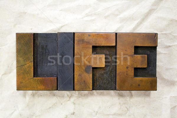 Leven woord geschreven vintage type Stockfoto © enterlinedesign
