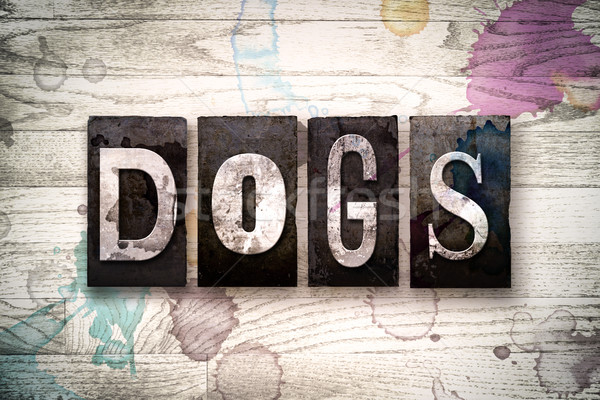 Stock photo: Dogs Concept Metal Letterpress Type