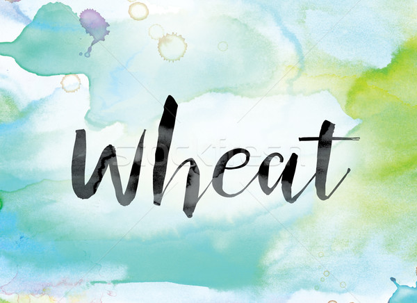 Wheat Colorful Watercolor and Ink Word Art Stock photo © enterlinedesign