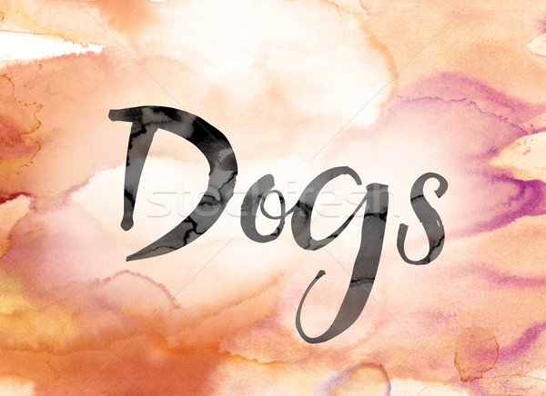 Dogs Colorful Watercolor and Ink Word Art Stock photo © enterlinedesign