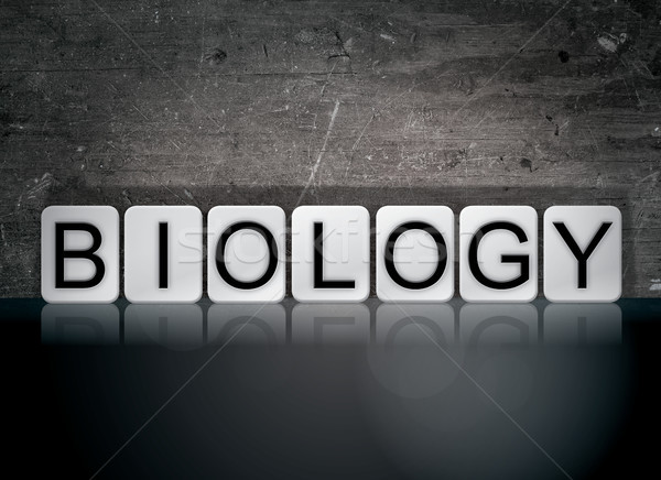 Biology Concept Tiled Word Stock photo © enterlinedesign