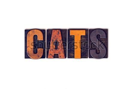 кошек изолированный тип слово написанный Сток-фото © enterlinedesign