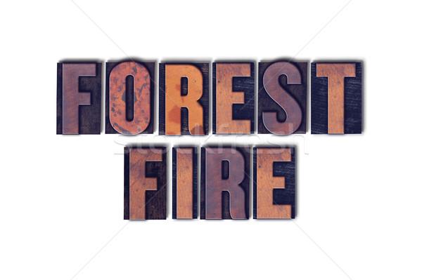 Incendios forestales aislado palabra palabras escrito Foto stock © enterlinedesign