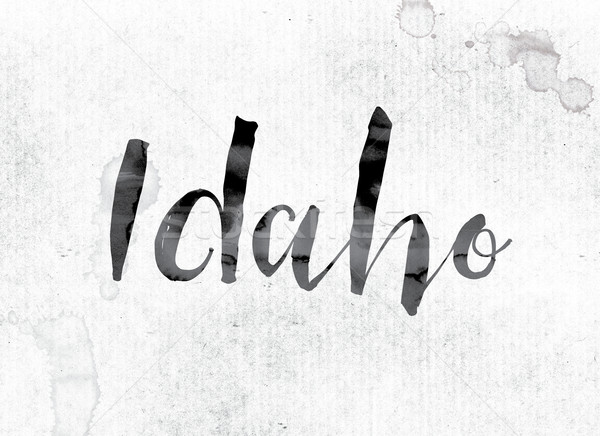 Idaho boyalı mürekkep kelime suluboya beyaz Stok fotoğraf © enterlinedesign