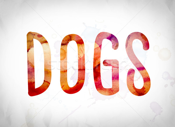 Dogs Concept Watercolor Word Art Stock photo © enterlinedesign