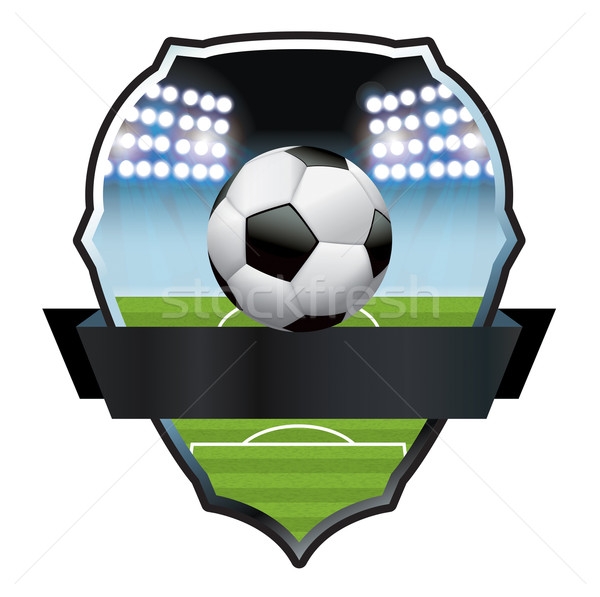 Soccer Football Field and Ball Illustration Stock photo © enterlinedesign