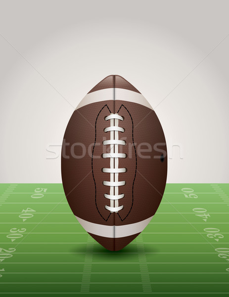American Football on Grass Field Illustration Stock photo © enterlinedesign