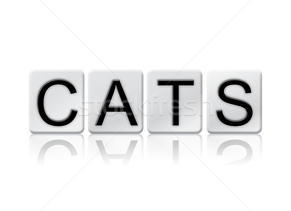 Cats Isolated Tiled Letters Concept and Theme Stock photo © enterlinedesign