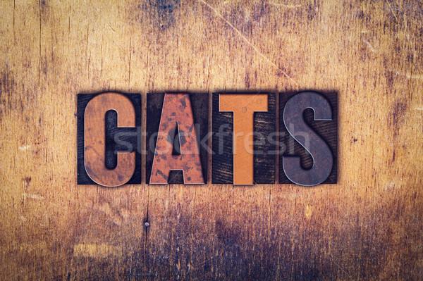 кошек тип слово написанный Сток-фото © enterlinedesign