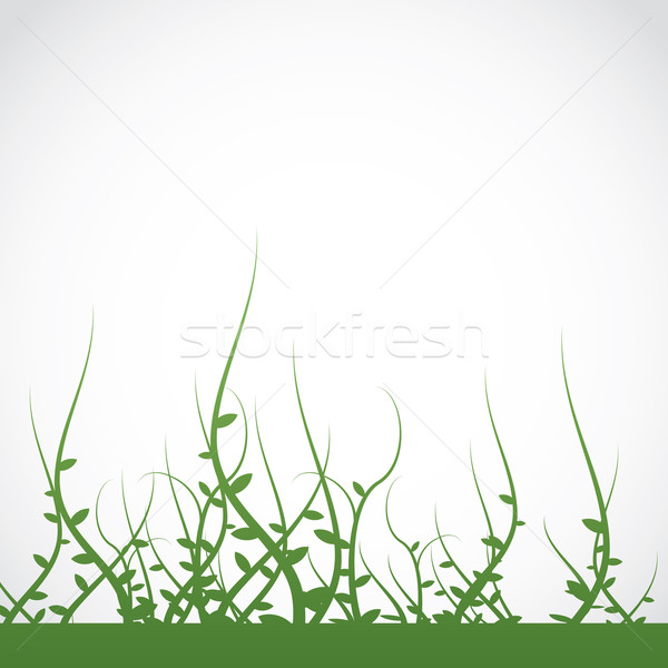 Growing Plants Weeds Background Stock photo © enterlinedesign