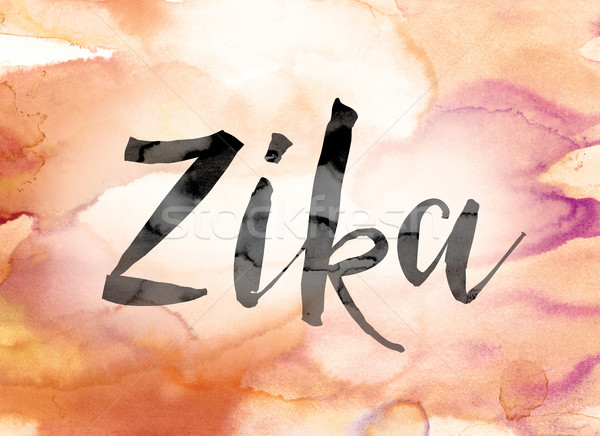 Zika Colorful Watercolor and Ink Word Art Stock photo © enterlinedesign