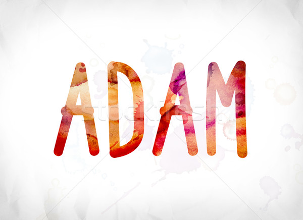 Adam Concept Painted Watercolor Word Art Stock photo © enterlinedesign