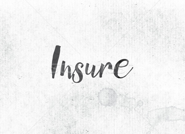 Insure Concept Painted Ink Word and Theme Stock photo © enterlinedesign