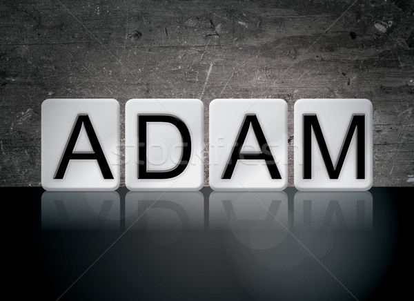 Adam Concept Tiled Word Stock photo © enterlinedesign