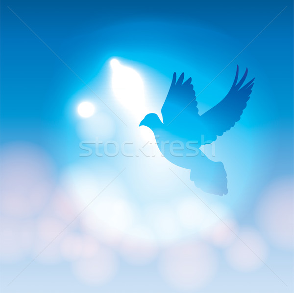 Illustrated Dove Silhouette and Soft Bokeh Lights Stock photo © enterlinedesign