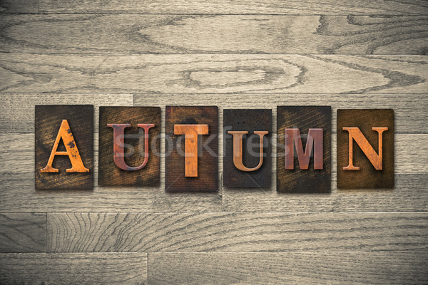 Autumn Wooden Letterpress Theme Stock photo © enterlinedesign