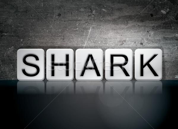 Tubarão azulejos cartas palavra escrito branco Foto stock © enterlinedesign